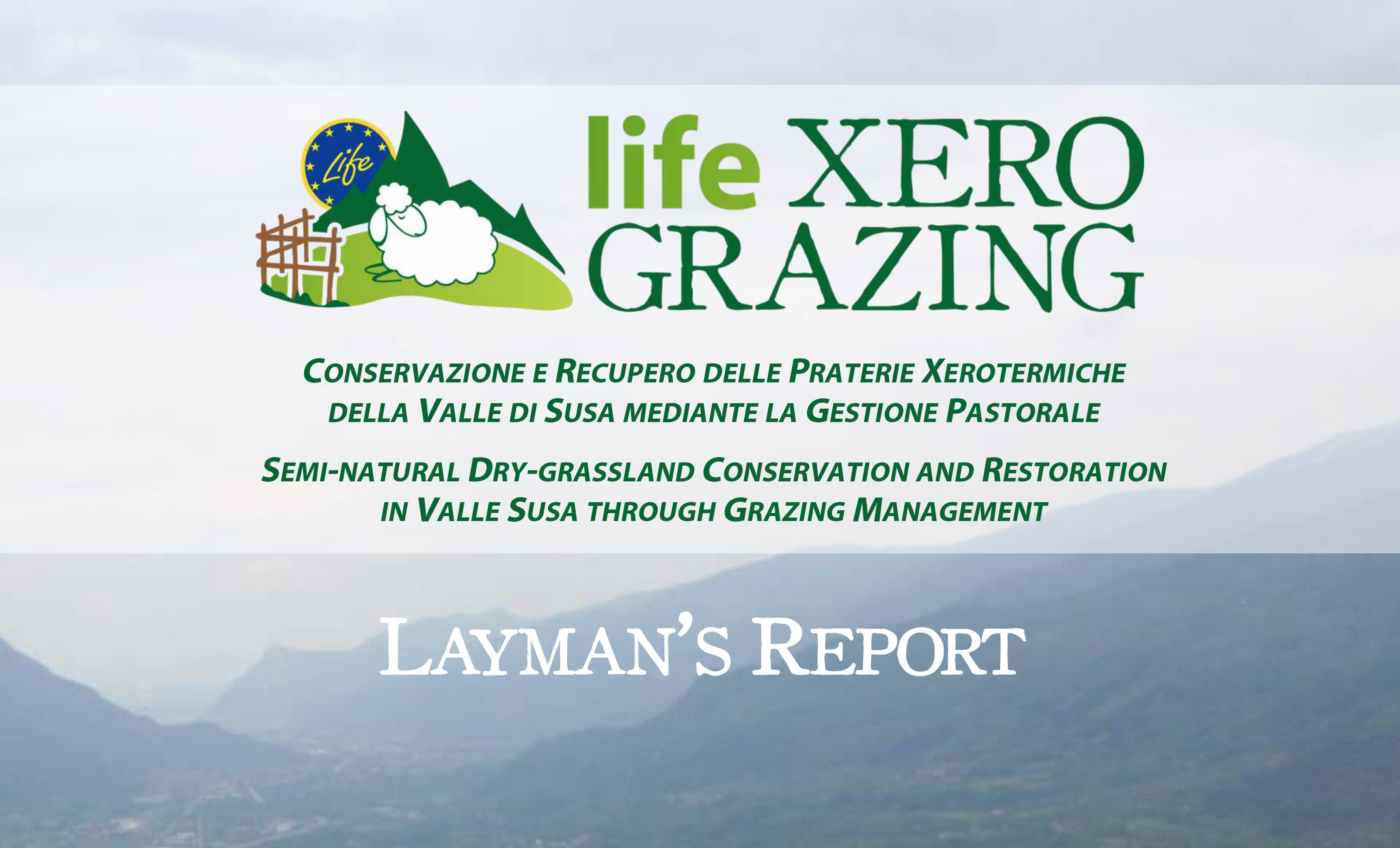 DOWNLOAD THE LAYMAN'S REPORT OF THE PROJECT
